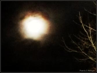 super-moon2-2016